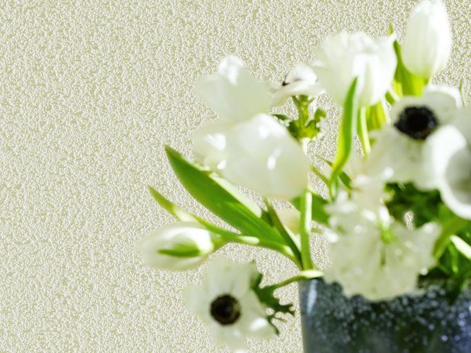 Knauf knauf diy dekorative wandgestaltung for Dekorative wandgestaltung